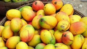 محبوبترین میوه دنیا