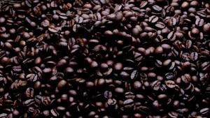 دانه های قهوه ، کافئین ، کافه ، دانه های قهوه ، غذا