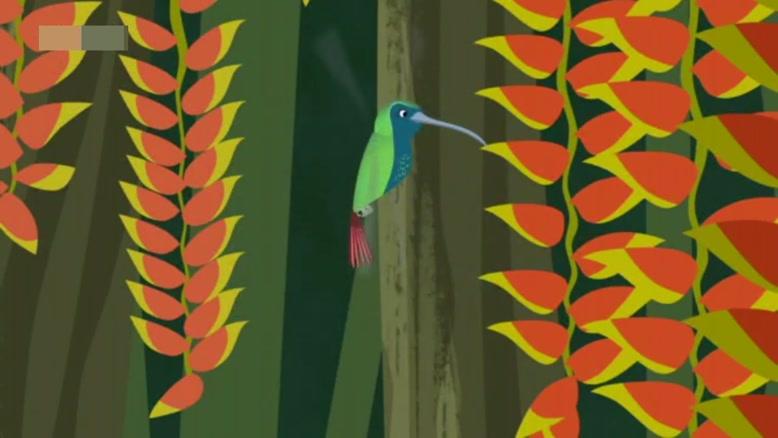 انیمیشن آموزش زبان انگلیسی Wild Kratts قسمت 50