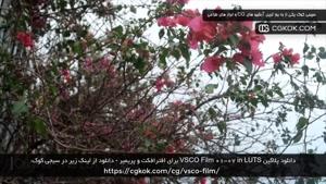 دانلود پلاگین VSCO Film 01-07 in LUTS برای افترافکت و پریمیر