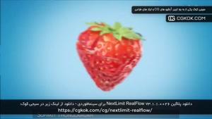 دانلود پلاگین NextLimit RealFlow v3.1.1.0026 برای سینمافوردی